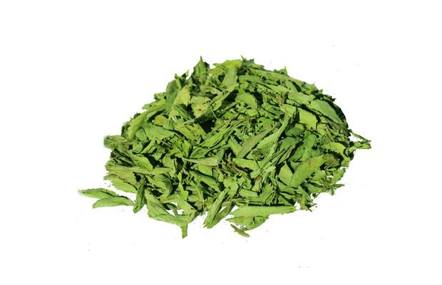 hojas-stevia