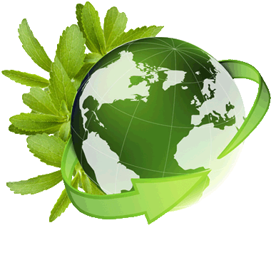 mundo-stevia